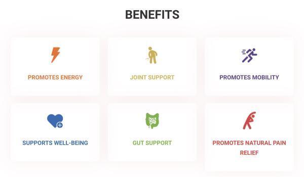 Image - SuperFood Benefits